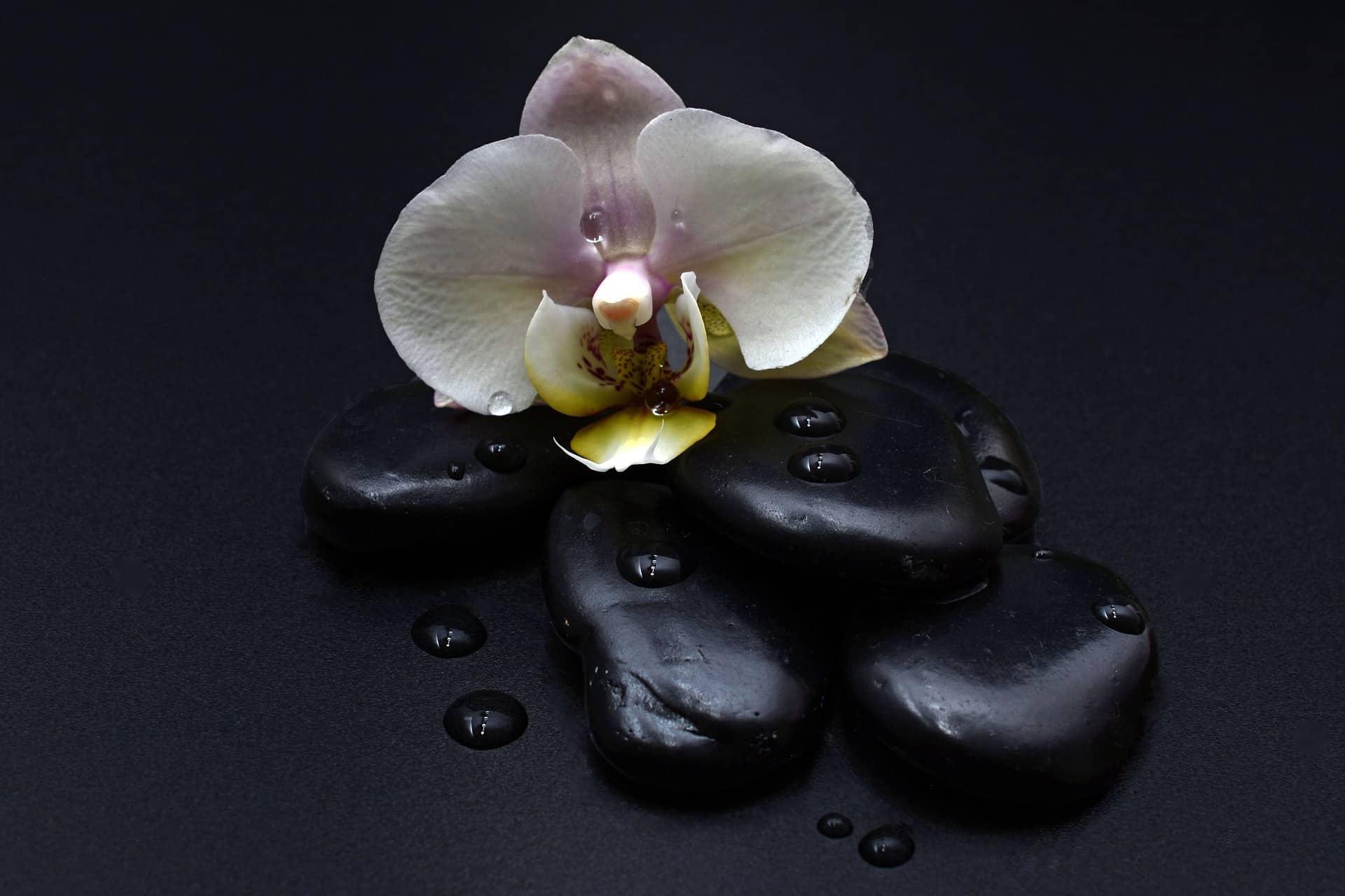 hot stone massage rocks